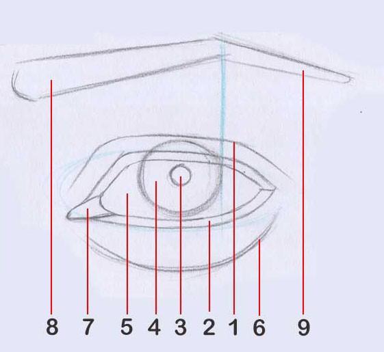یادگیری مرحله به مرحله سیاه قلم هایپررئال چشم